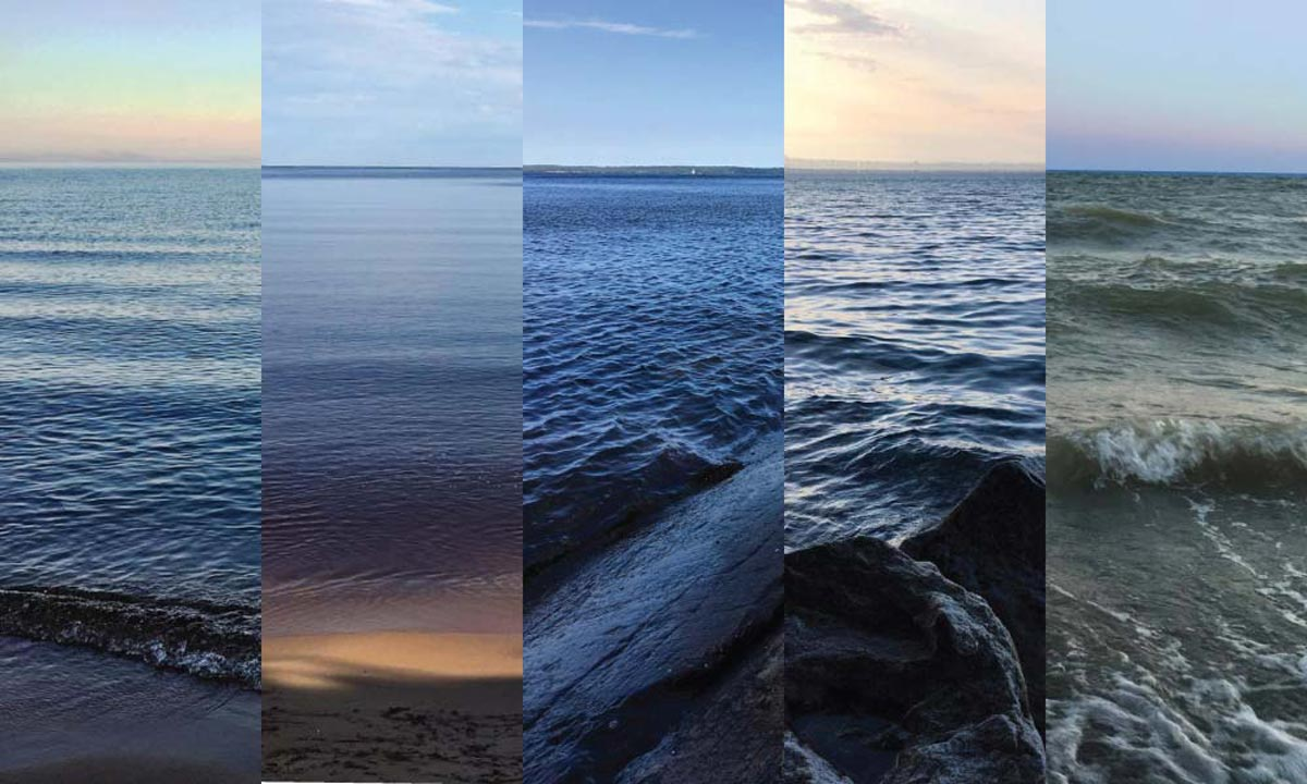 All 5 Michigan Great Lakes