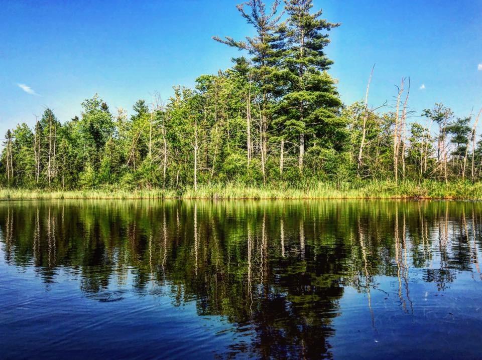 Chamberlain Lake Reflection