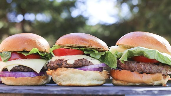 Body By (22 of Michigan's Best) Burgers