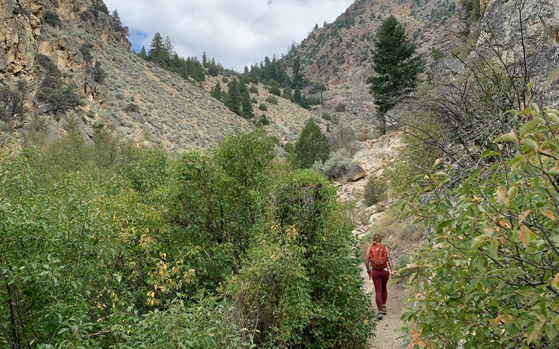 Goldbug Hotspring Hiking-trail